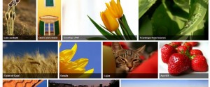Flickr picture gallery style