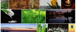 Simple grid gallery